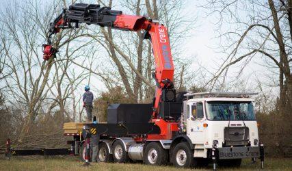 tree service crane ash tree removal
