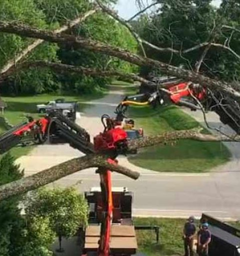 Double Truck Tree Removal in Monroe County