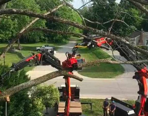 Double Truck Tree Removal