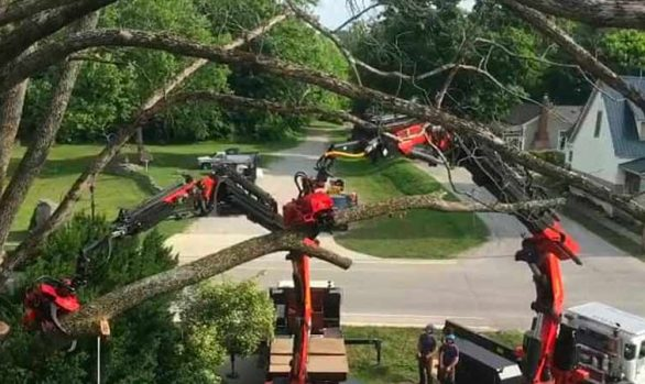 Double Truck Tree Removal in Monroe County [video]