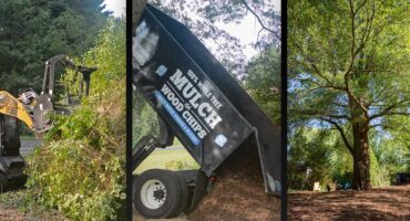 tree services picture set