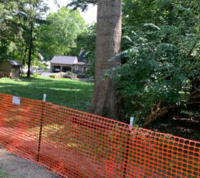 tree protection zone fencing on construction site