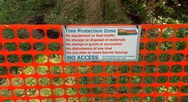 tree protection zone sign and fencing