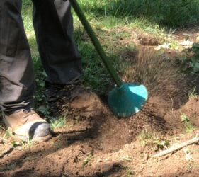 arborist using air knife to cut into the soil