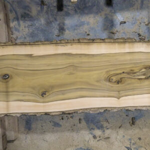 black gum wood slab