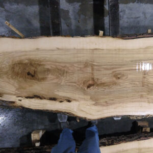 Ash Wood Slab AH-01-03