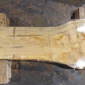 Ash Wood Slab AH-03-01