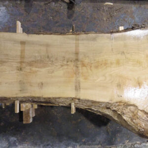 Ash Wood Slab AH-03-07