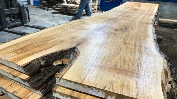 Ash wood slab AH-04-6b