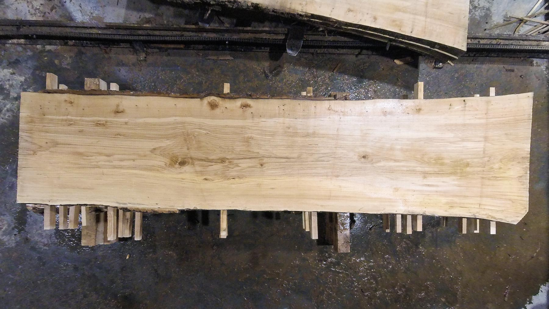 Ash wood slab AH-06-4