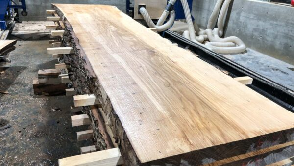 Ash wood slab AH-06-5b