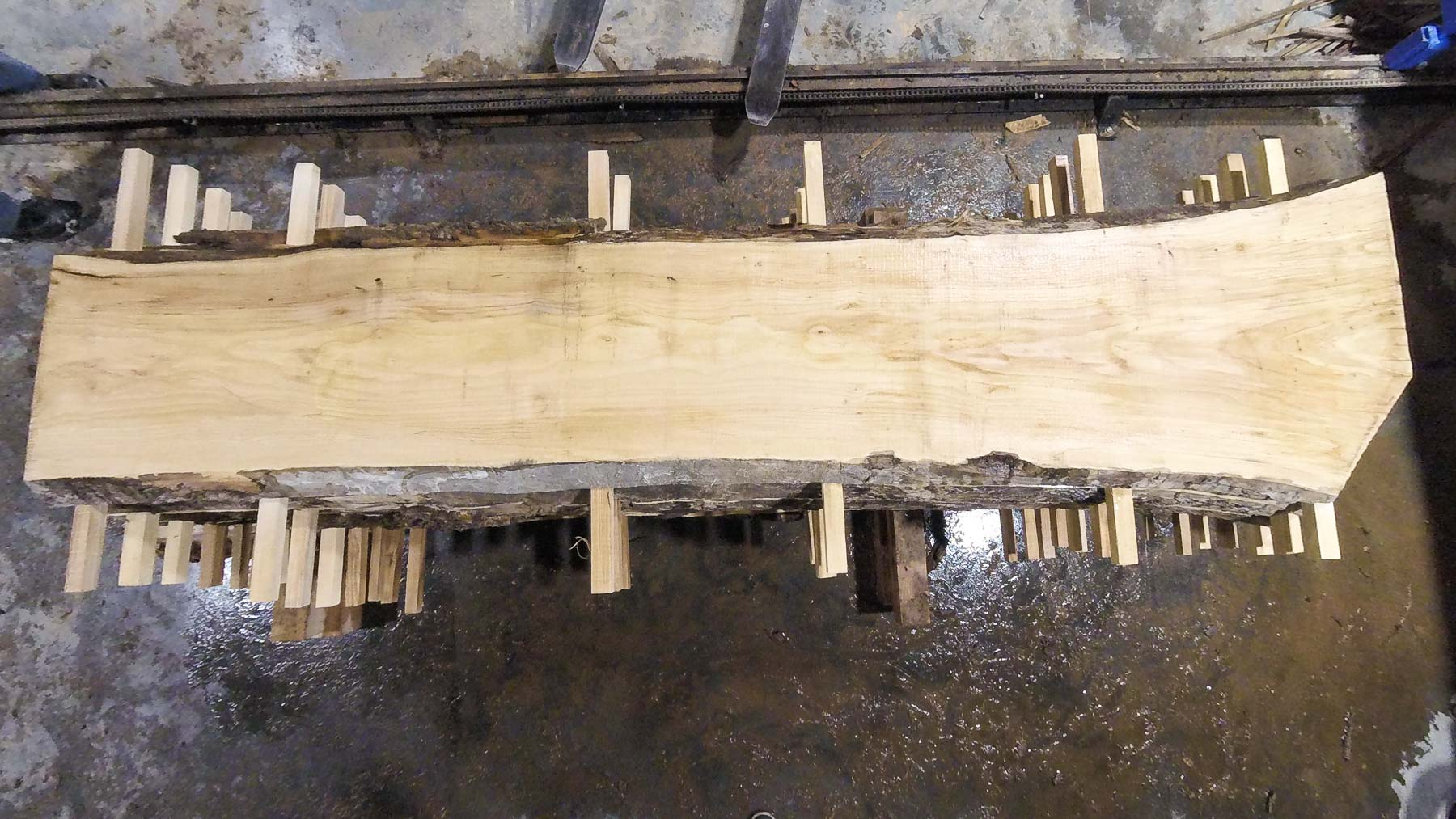 Ash wood slab AH-06-7