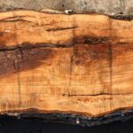 Ash wood slab AH-07-05