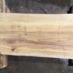 Bald Cypress wood slab BC-01-1