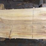 Bald Cypress wood slab BC-01-3