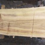 Bald Cypress wood slab BC-01-4