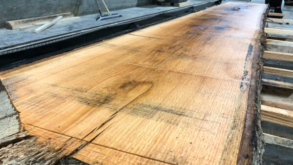 Black Oak wood slab KO-01-3b