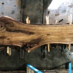 Black Walnut wood slab WN-03-02