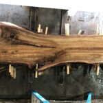Black Walnut wood slab WN-03-03