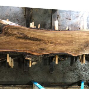Black Walnut wood slab WN-03-04