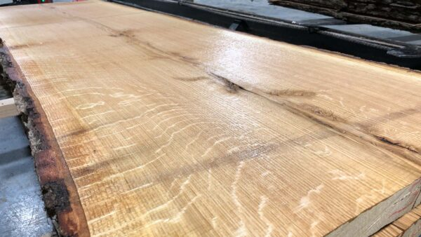 Chestnut Oak wood slab NO-01-2b