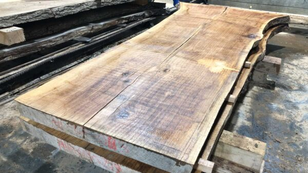 Red Oak wood slab RO-03-2b