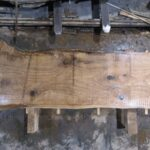 Red Oak wood slab RO-04-2