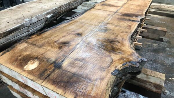 Red Oak wood slab RO-04-4b