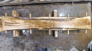 Silver Maple wood slab VM-01-2