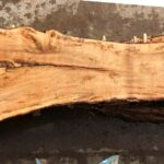 Silver Maple wood slab VM-02-07