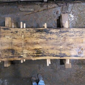 Sycamore wood slab SY-01-3