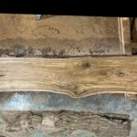 Black Walnut wood slab 04-05