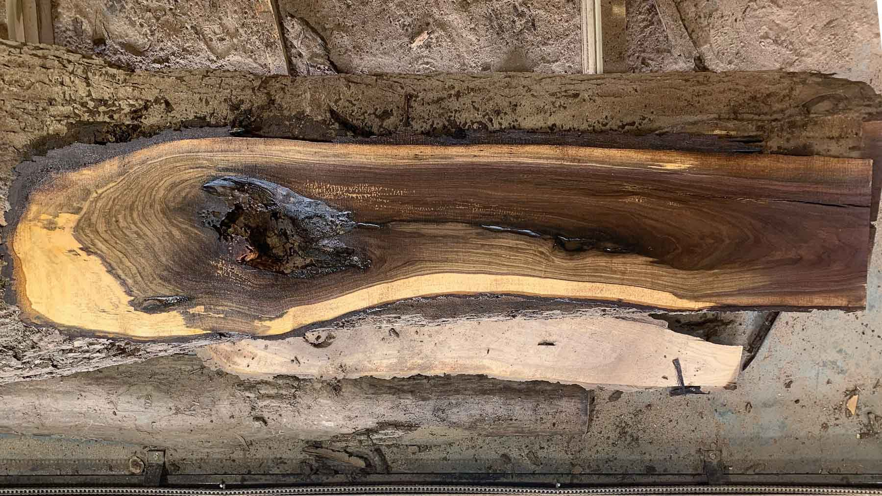Black Walnut wood slab 05-01