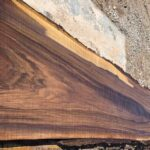 Black Walnut wood slab 06-01