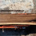 Black Walnut wood slab 06-03