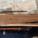 Black Walnut wood slab 06-04