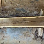Black Walnut wood slab 07-03