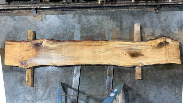 Sweetgum wood slab SG-03-01