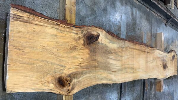 Sweetgum wood slab SG-03-01c