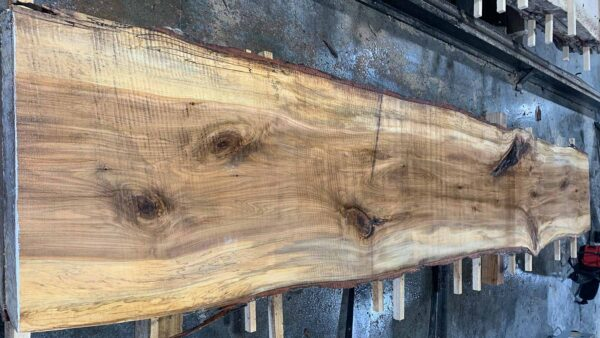 Sweetgum wood slab SG-03-03b