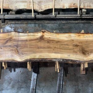 Sweetgum wood slab SG-03-05