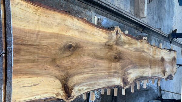 Sweetgum wood slab SG-03-06b
