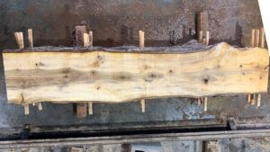 Sweetgum wood slab SG-05-04