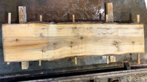 Sweetgum wood slab SG-06-01