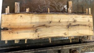 Sweetgum wood slab SG-06-02