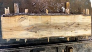 Sweetgum wood slab SG-06-03