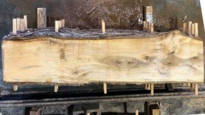Sweetgum wood slab SG-06-04