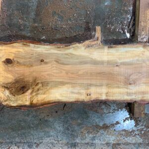 Sweetgum wood slab SG-04-01