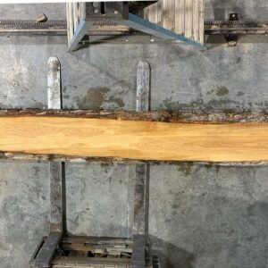 White Oak wood slab WO-02-01