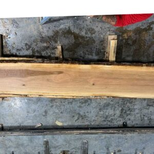 White Oak wood slab WO-02-02